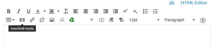 Canvas text editor with Insert Media icon highlighted