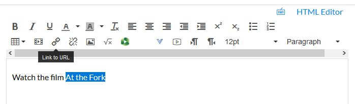Canvas text editor box with icon to link to a URL highlighted