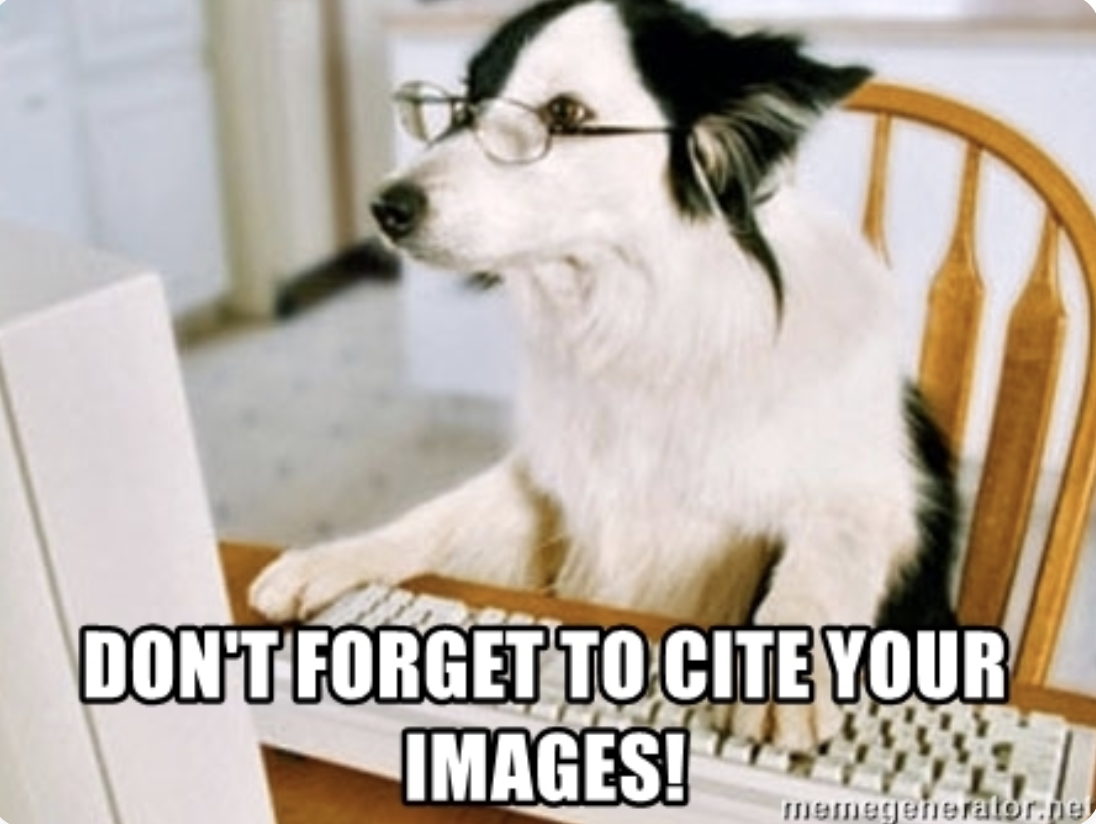Meme of dog sitting at a computer