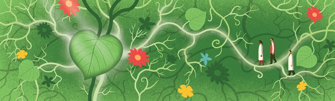 Graphic of plants