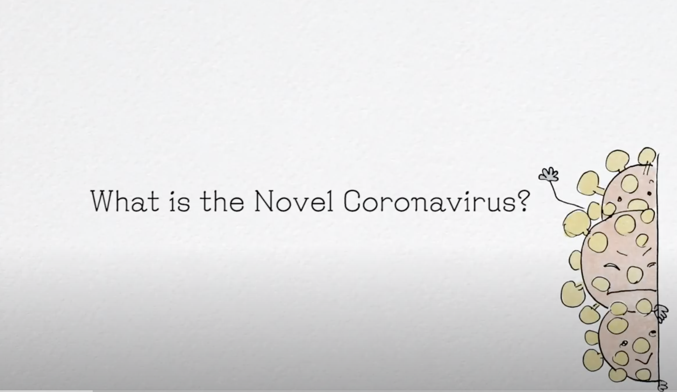 What is the Novel Coronavirus?