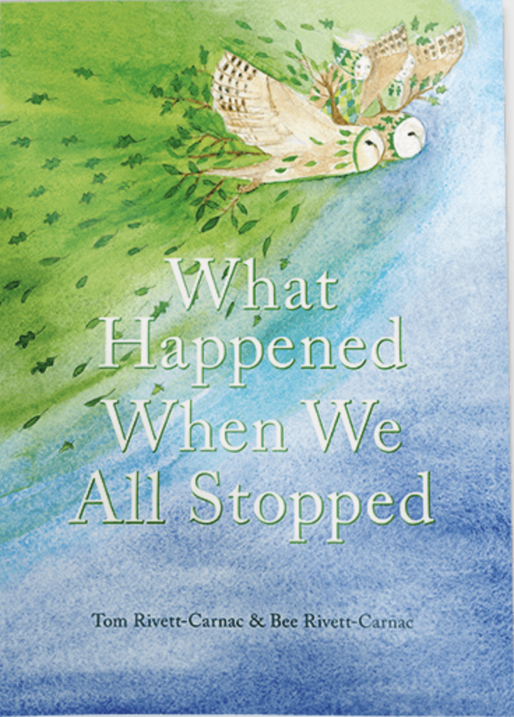What Happened When We All Stopped