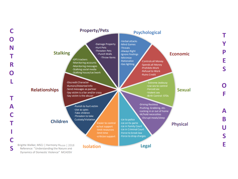 diagram with the types of control (children, pets/property, stalking, relationships) and types of abuse (psychological, physical, sexual, economic, and legal)