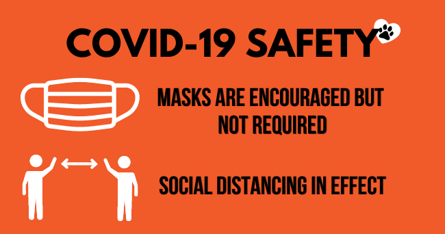 Masks are encouraged but not required