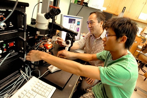 Chemical Engineering Professor Wenji Dong works with a student in the lab