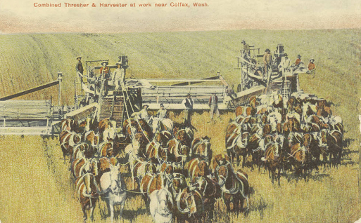 thresher_colfax_washington