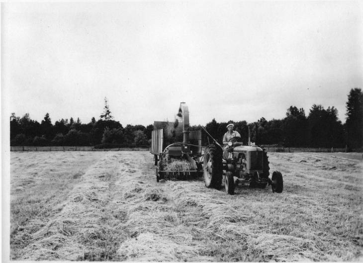 larson_farm_skagit_valley