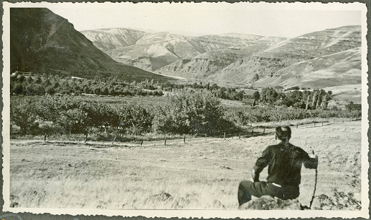 man sitting in front of a peach orchard