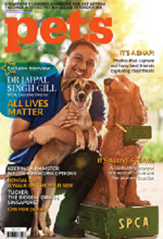 pets magazine cover link to flipster online magazine