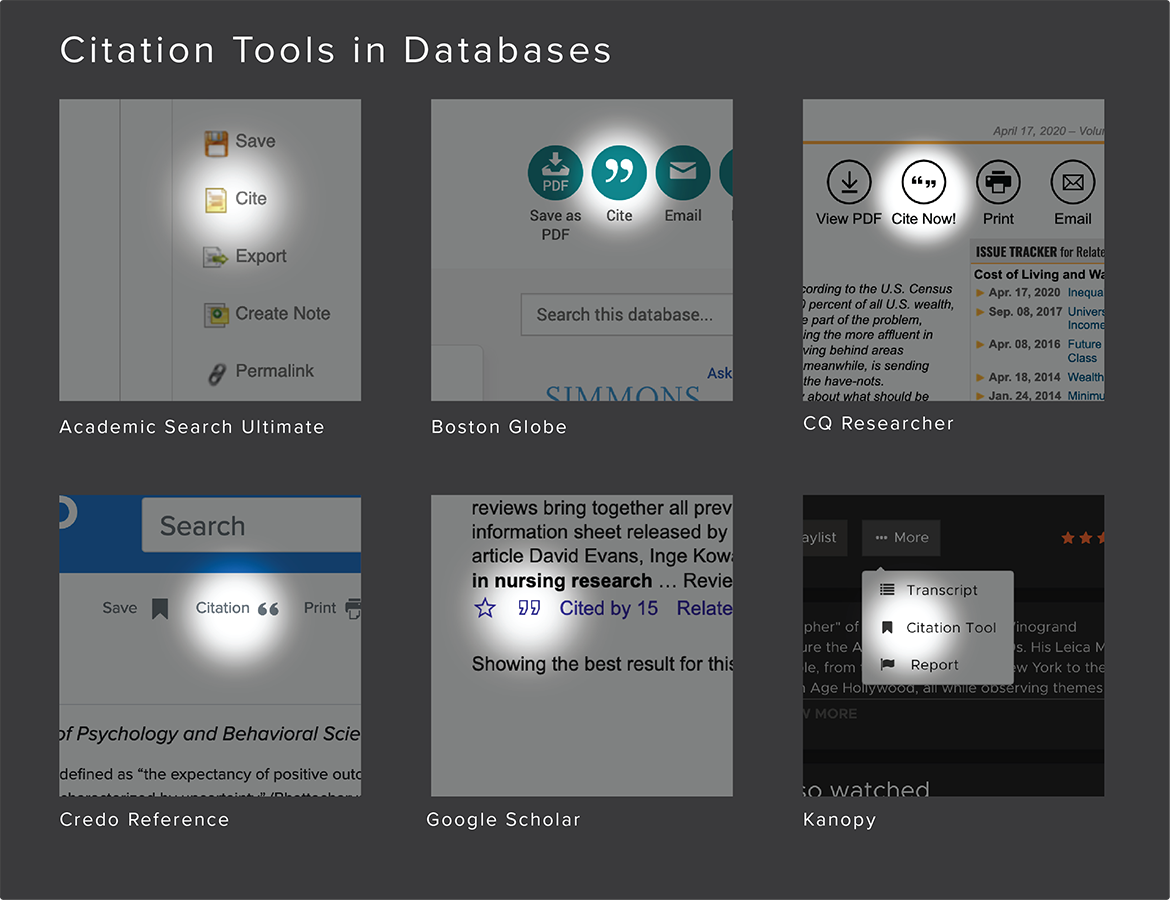 Citation tools found in databases