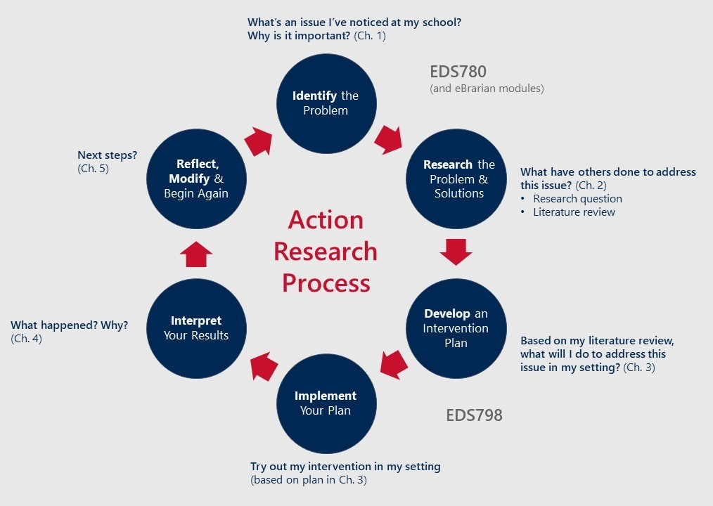 Diagram of the action research process