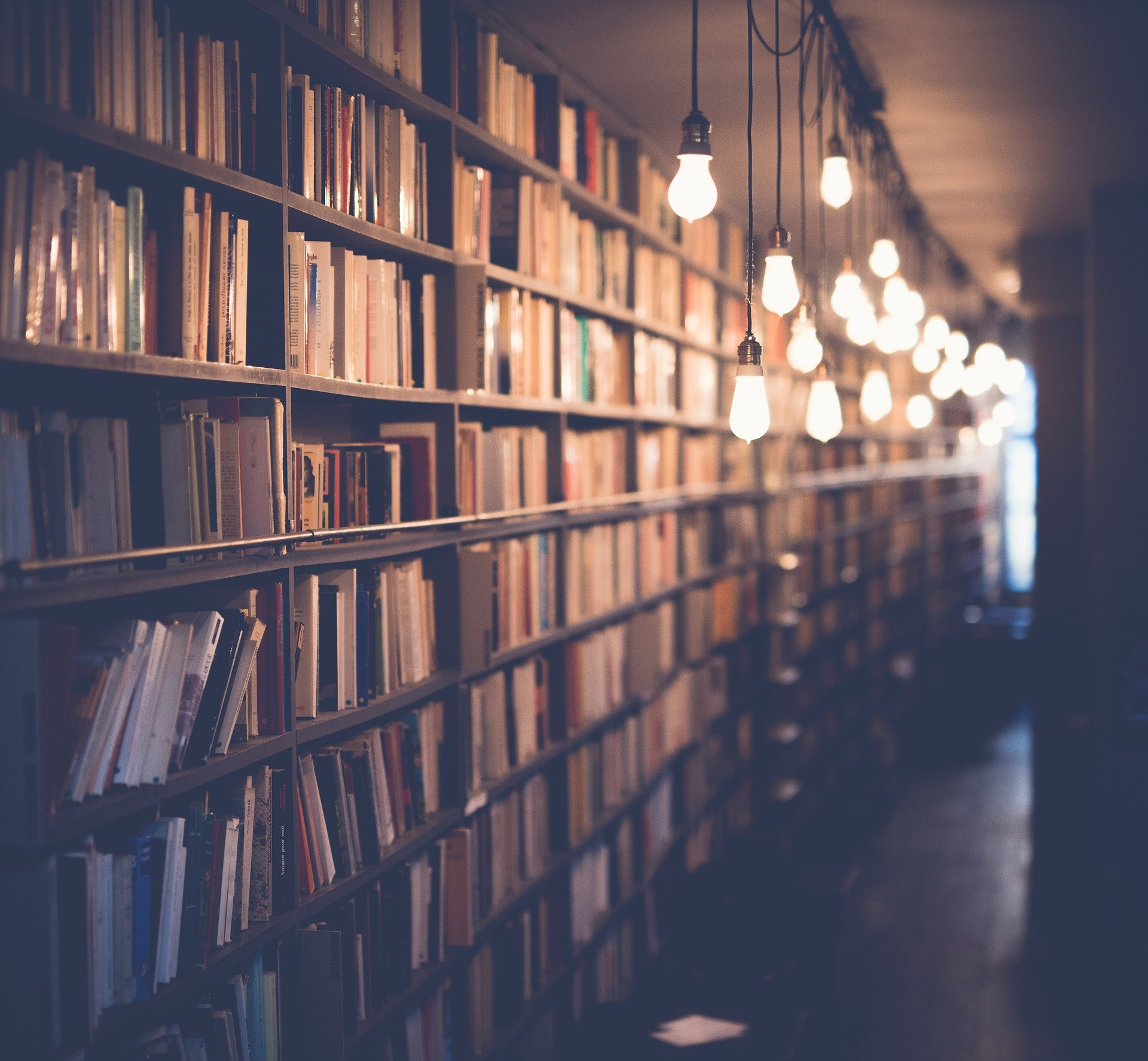 Wall to booksheleves, full of books.