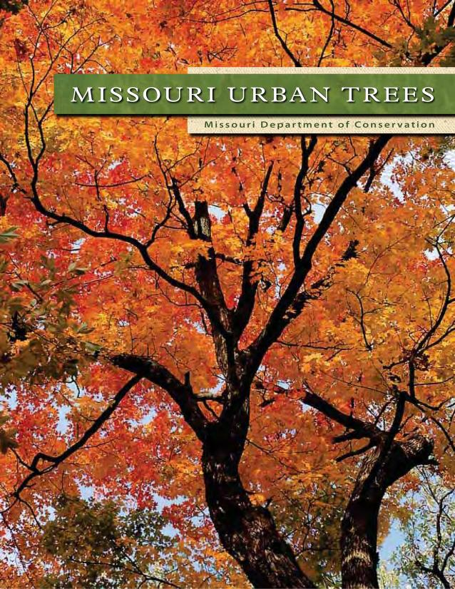 Cover image for Missouri Urban Trees