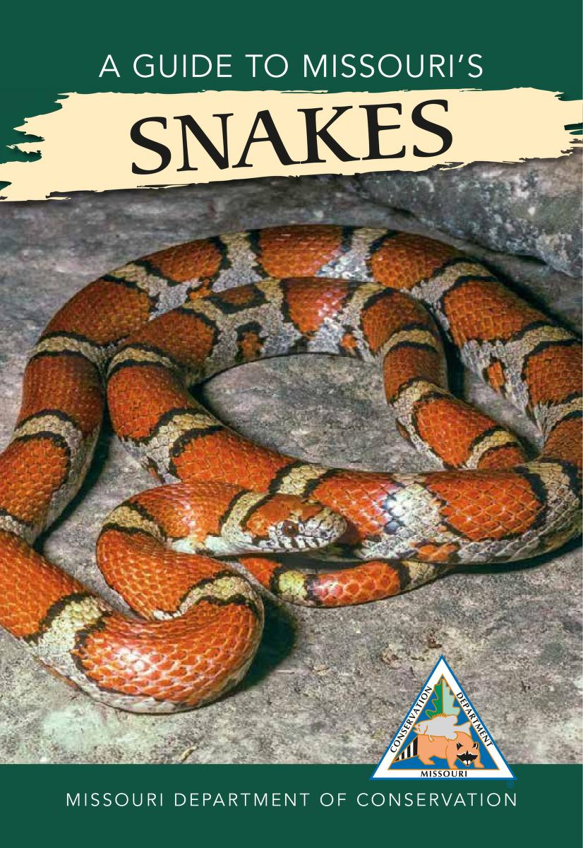 Cover image of A Guide to Missouri's Snakes