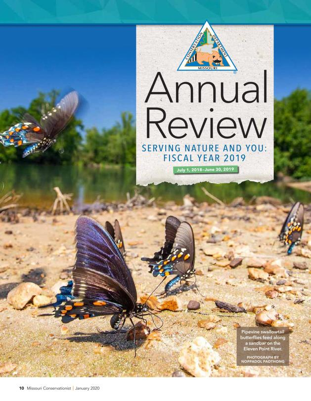 Cover image of Department of Conservation's Annual Report. Click to view