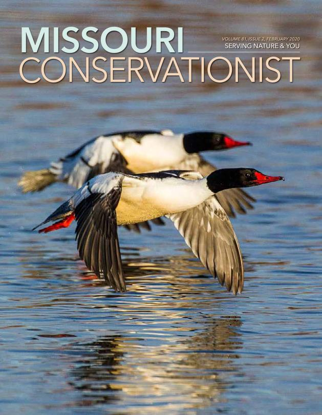 Latest issue of Missouri Conservationist. Click to view