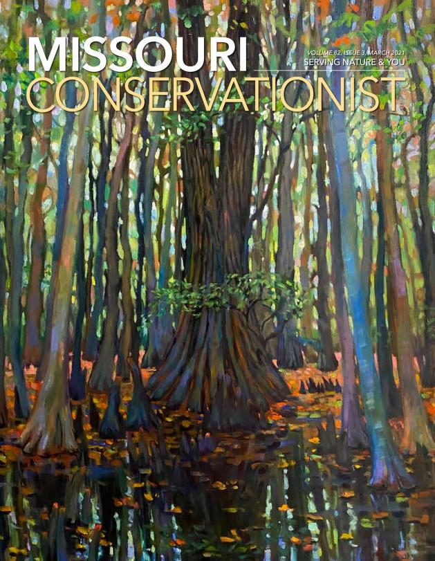 Cover image of Missouri Conservationist