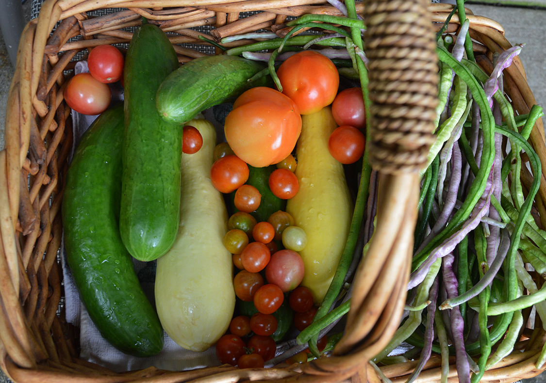 A basket of fresh vegetables.