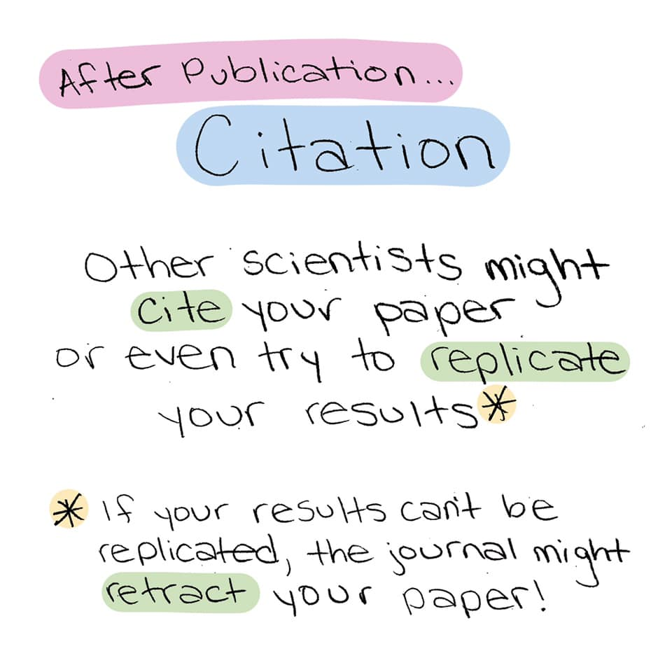 After publication... citation. Other scientists might  cite your paper or even try to replicate your results. If your results can't be replicated, the journal might retract your paper!