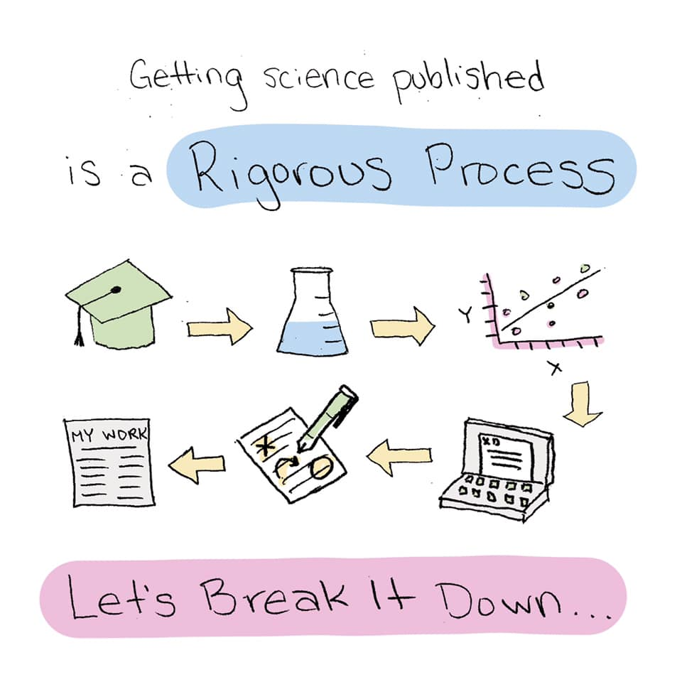 Getting science published is a rigorous process. Let's break it down...