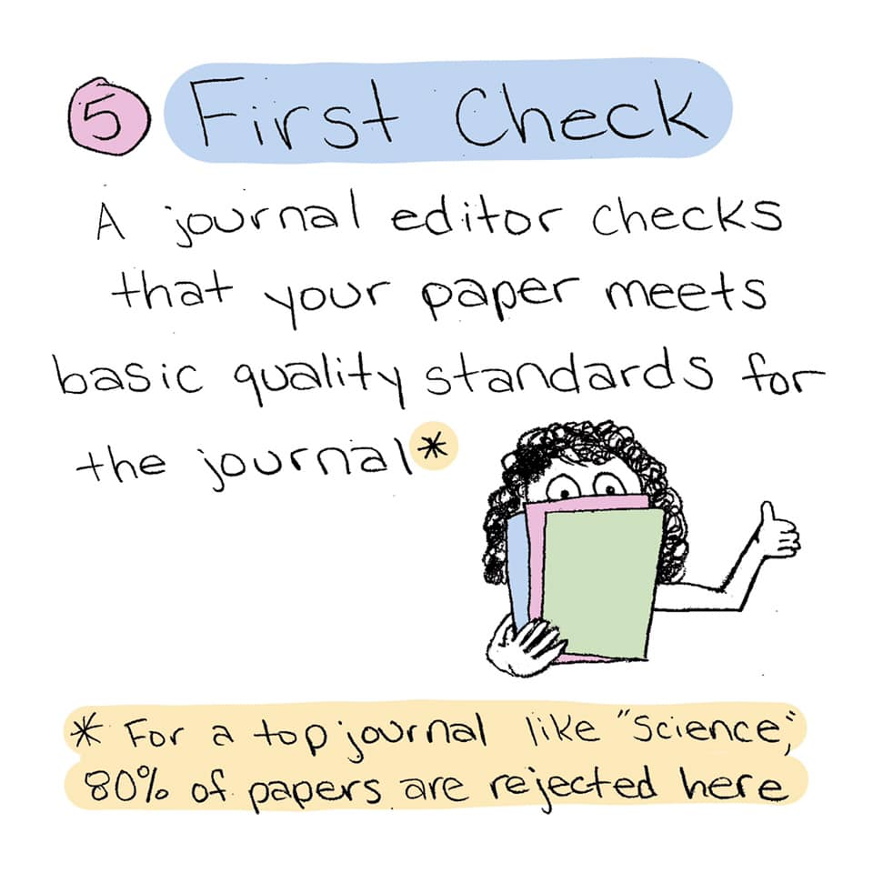 First check. A journal editor checks that your paper meets basic quality standards for the journal. For a top journal like