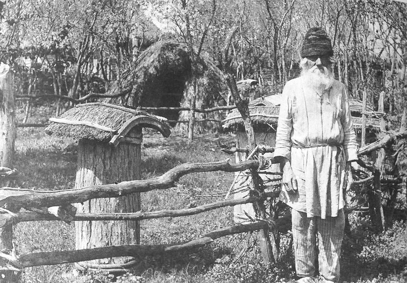 Photo of beekeeper standing in apiary.