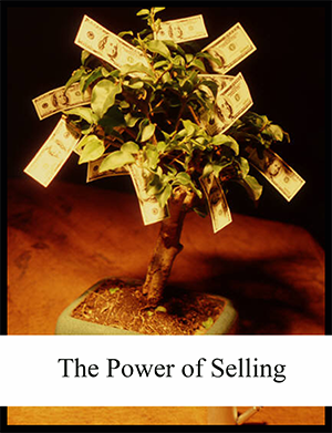 cover of the power of selling