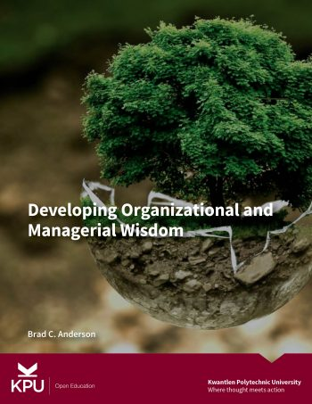 cover of developing organizational and managerial wisdom textbook