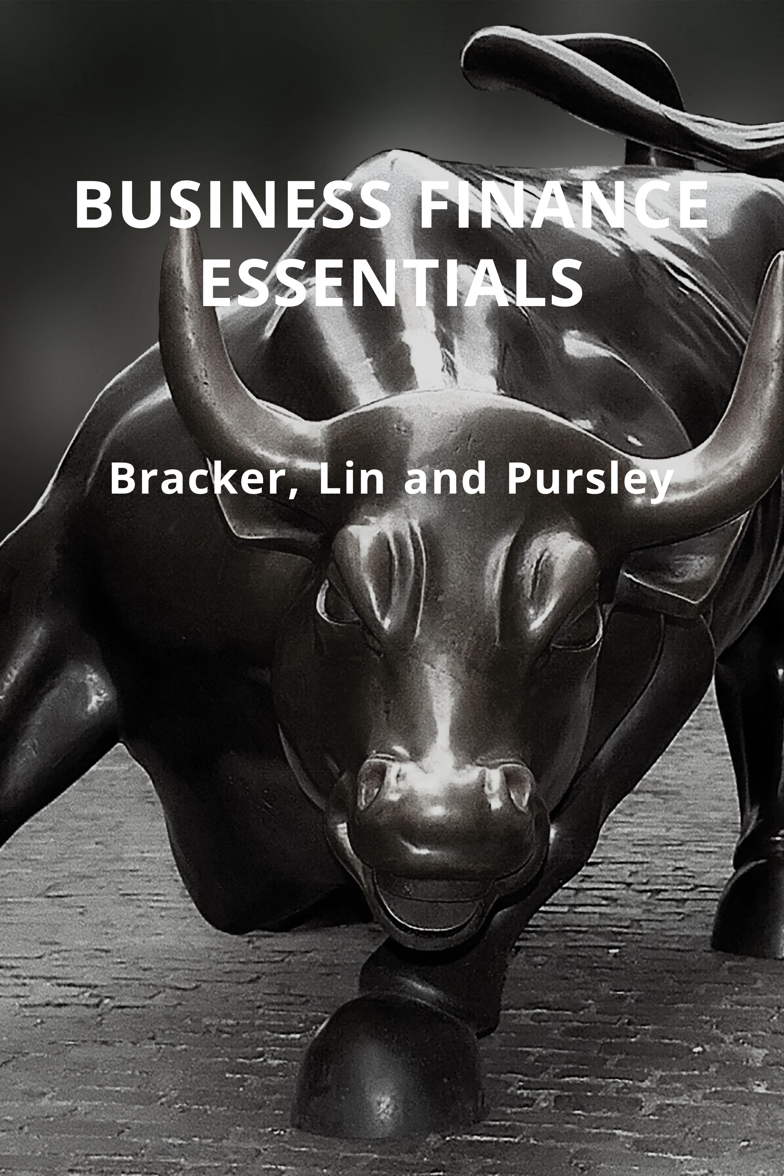 cover of business finance essentials