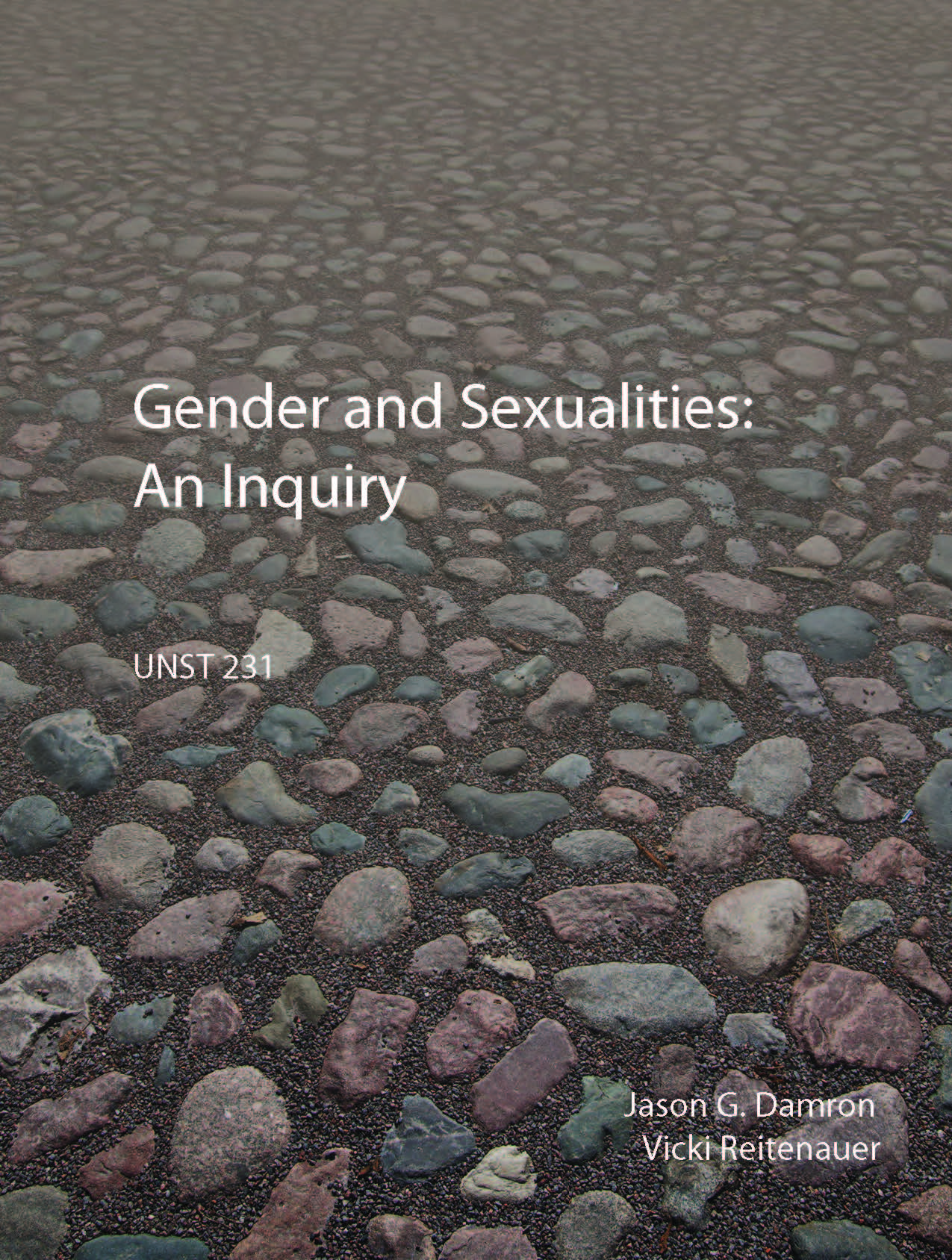 cover of gender and sexualities