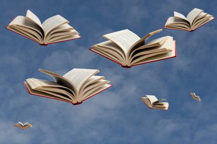 sky full of books