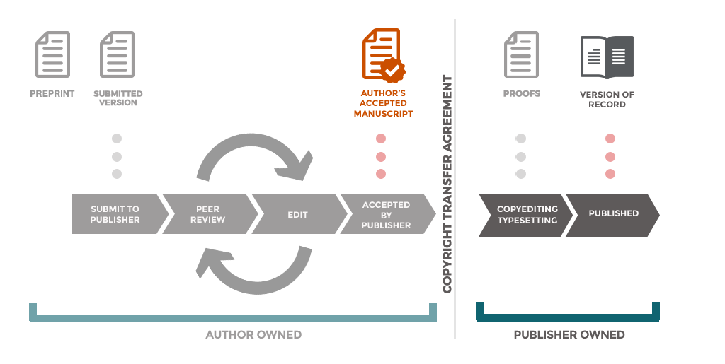 Flowchart of the publication process, showing preprints outside of the traditional submission and peer-review workflow.