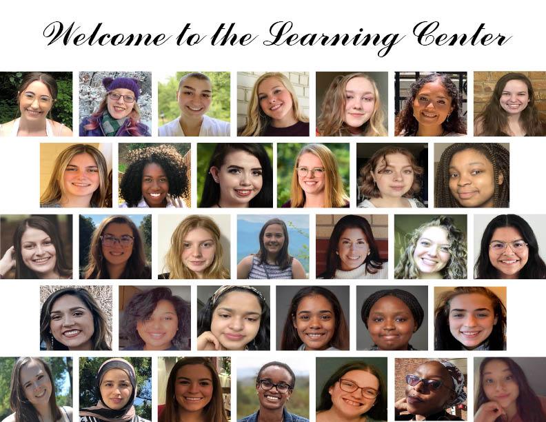 collage of tutor headshots