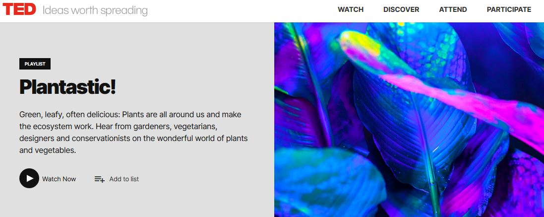 screenshot of TED talks playlist and image of leaves