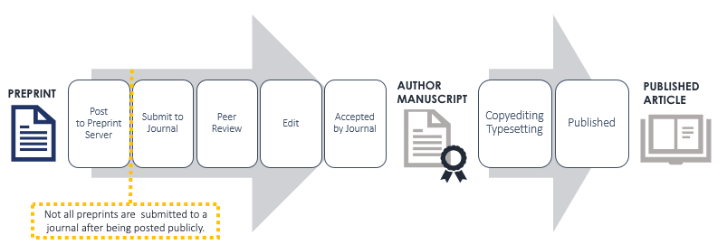 Lifecycle of a manuscript from preprint to publication