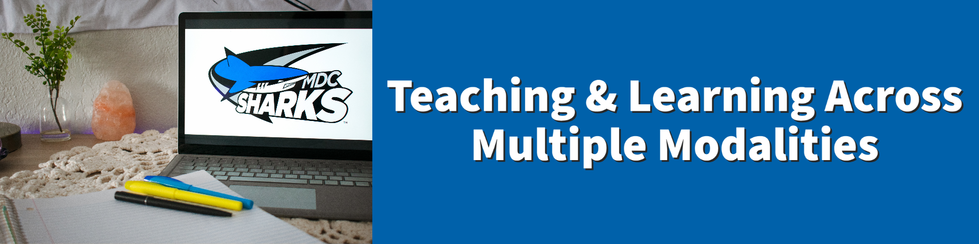 Graphic: Multiple Teaching Modalities with Shark Image