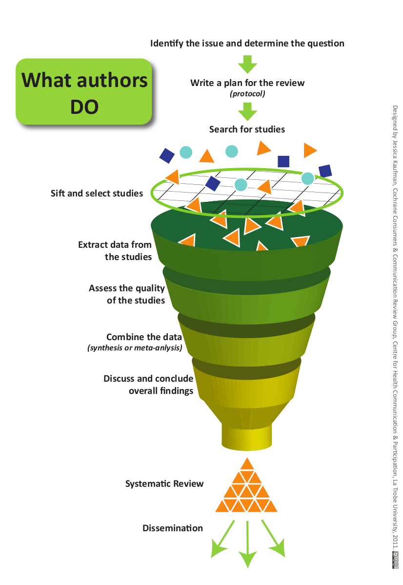 What authors do: systematic review process