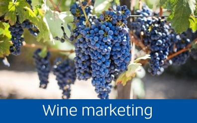 Navigate to wine marketing page