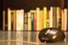 Books with a Mouse in Front