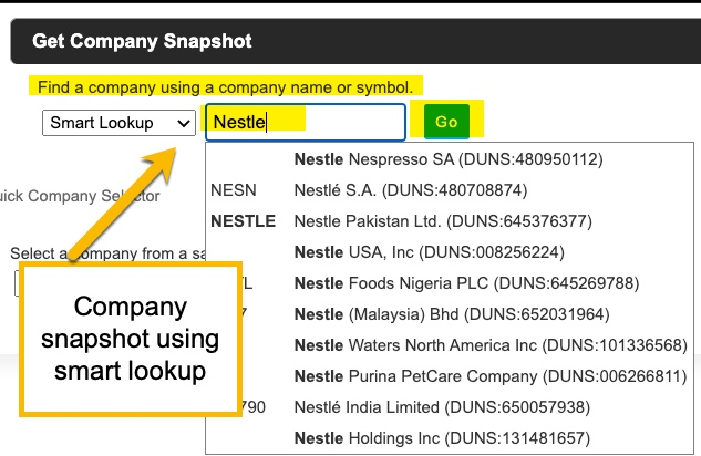 Company snapshot, using the smart lookup feature for a company name.