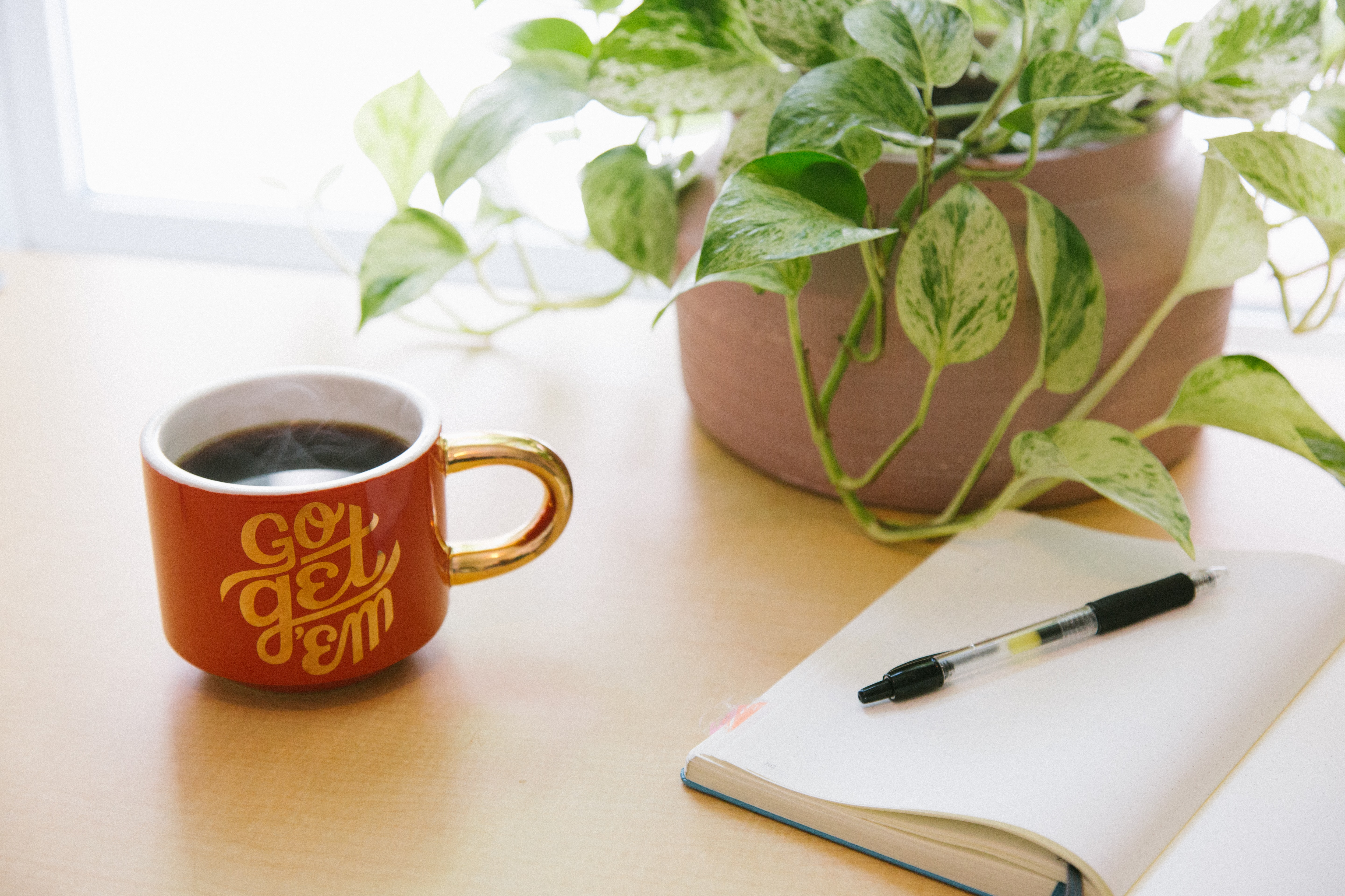Desk with house plant and coffee cup with coffee and notebook with pen