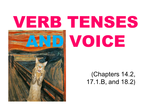 Verb Tenses and Voice Slide Show