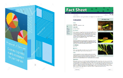 images of brochures and fact sheets