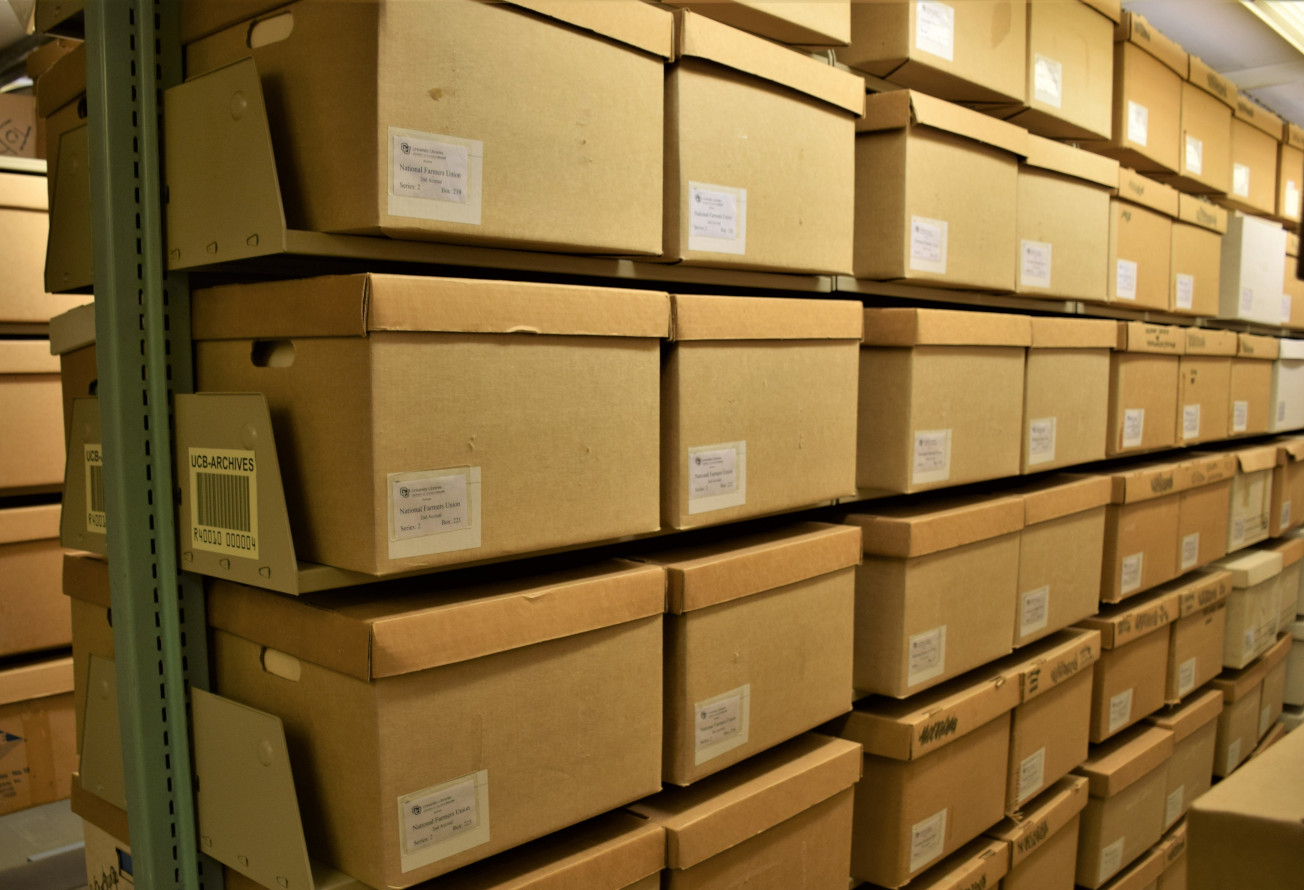 Photograph of cardboard archives boxes on shelves