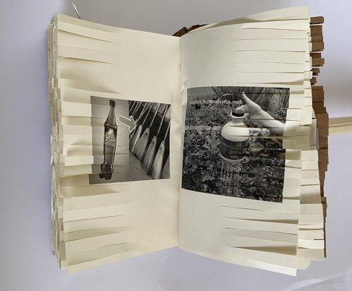 Andrea Gamboa Project, Image 5