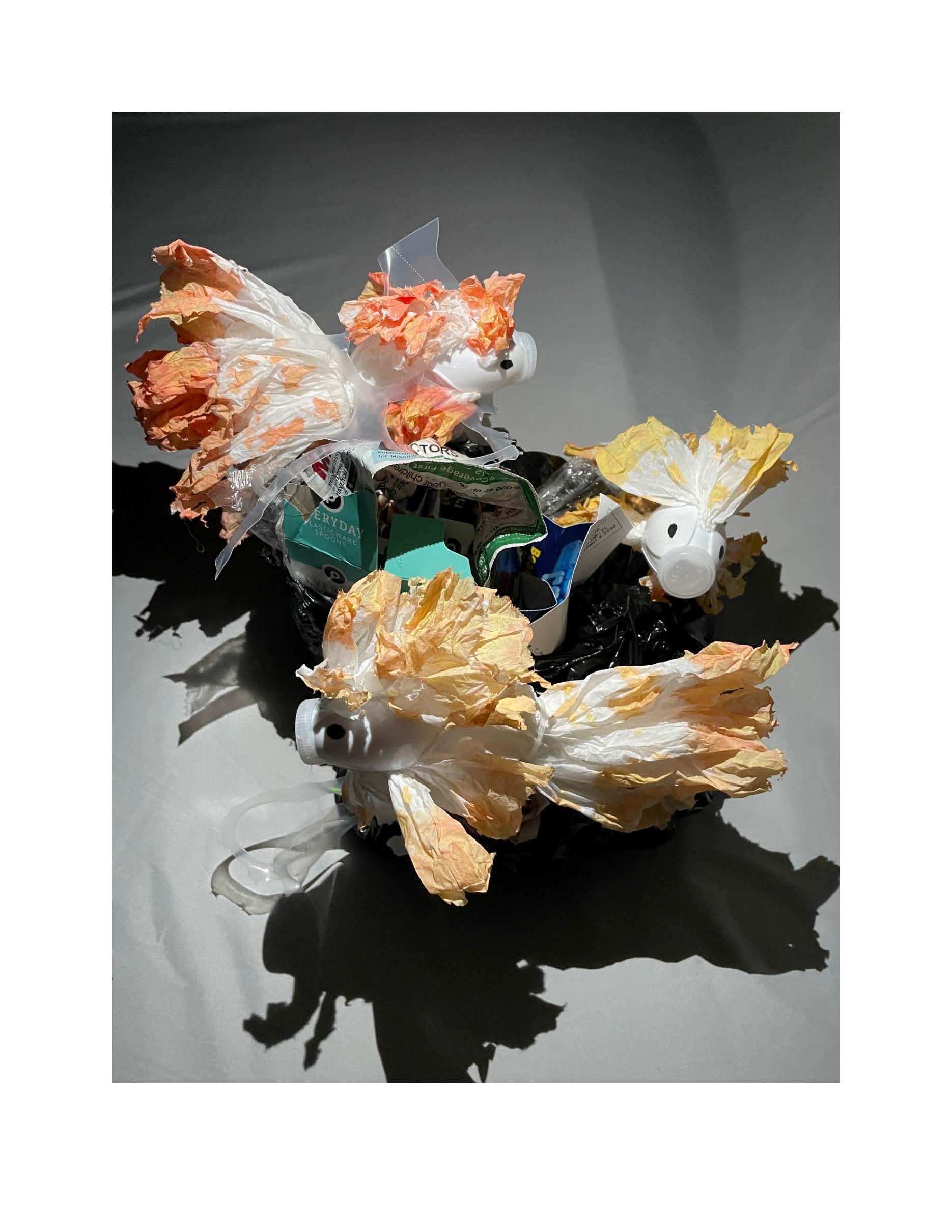 Alejandro Ramos Project, Image 6