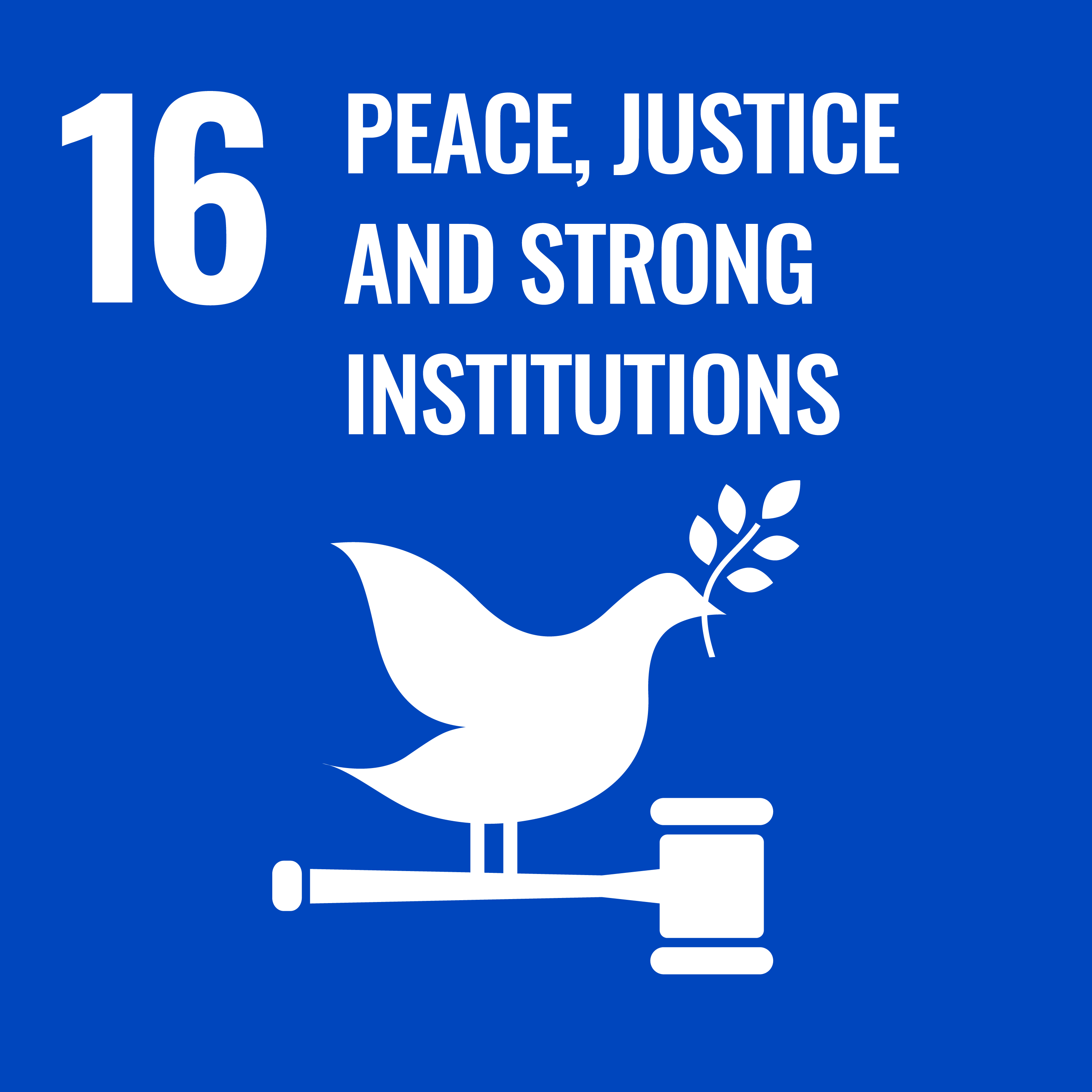 UN Sustainable Development Goals #16