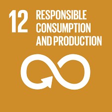 UN Sustainable Development Goals #12