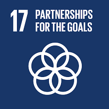 UN Sustainable Development Goals #17