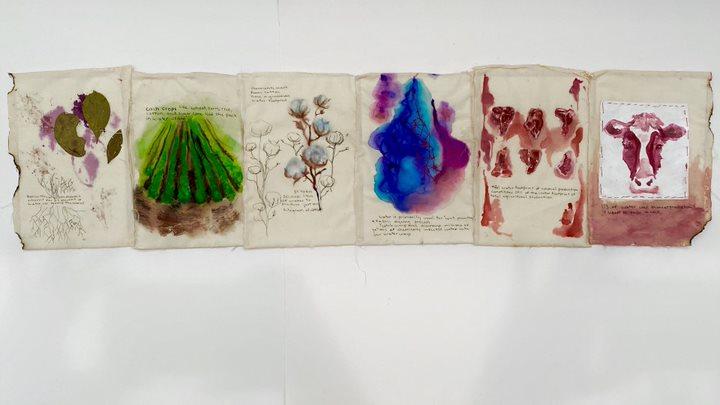 Serena Curbelo Project, Image 4